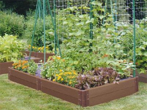 veg_garden_raised