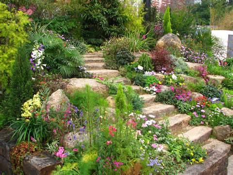 rock garden amaze