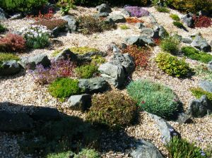 rock garden visual