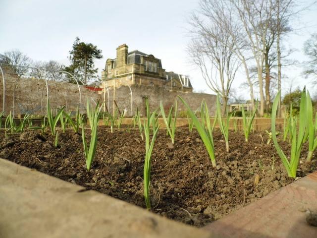 Gracemount Walled Garden