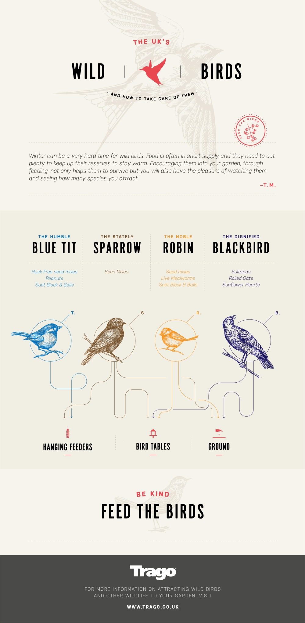 wild bird infographic